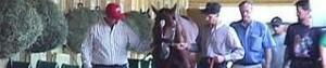 Florida Horse Racing, Florida Thoroughbred Racing, Florida Quarter Horse Racing