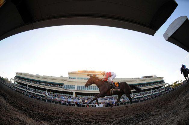 pari mutuel horse racing aberdeen sd